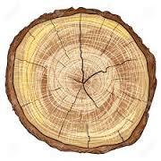 hamyartest - همیار تست - نمونه سوال و آزمون آنلاین - سوال فنی و حرفه ای - سوال درودگر - كابينت ساز چوبي